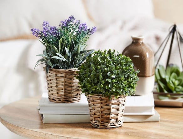 https://s3-ap-southeast-2.amazonaws.com/fusionfactory.commerceconnect.bbnt.production/pim_media/000/018/948/M_F-Potted-Plants-In-Baskets-189221-R.jpg?1568673905