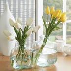https://s3-ap-southeast-2.amazonaws.com/fusionfactory.commerceconnect.bbnt.production/pim_media/000/014/785/m_f-tulip-bunch-9-stems-1832950-r_2.jpg?1563406927